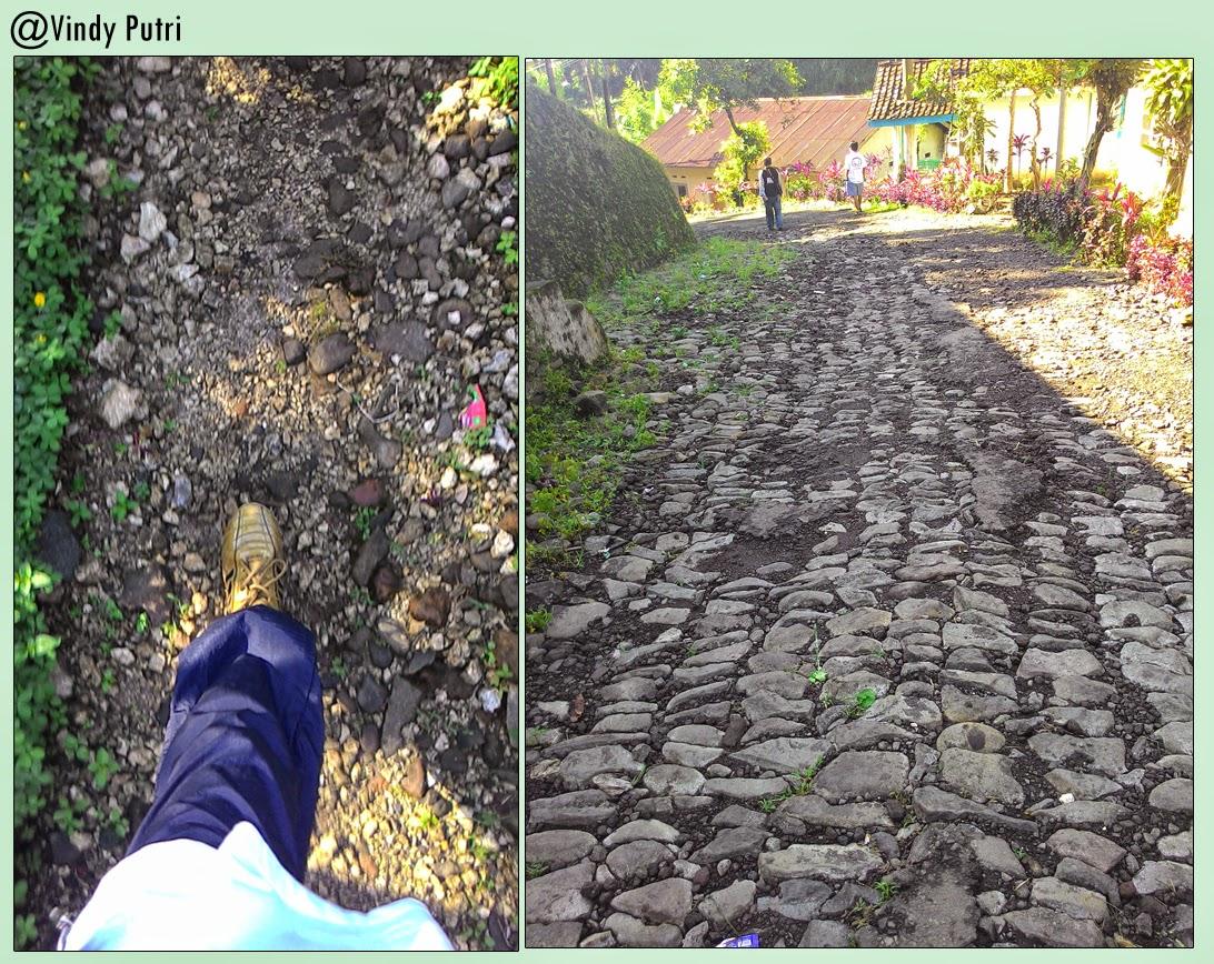 Catatan Perjalanan di PTPN XII Kebun Renteng Pabrik Rayap – Rembangan Jember