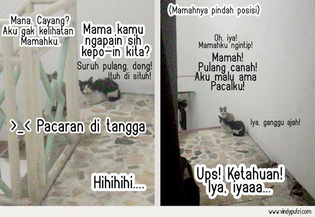Komik Kucing - Puspus Mulai Pacaran 5