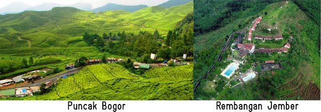 Puncak Bogor dan Rembangan