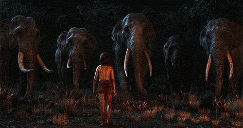 Mogwli dan Gajah
