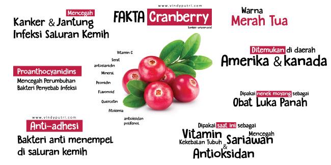 Fakta Cranberry