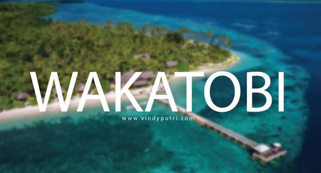 Puas Menikmati Wisata Bahari yang Tidak Biasa di Wakatobi