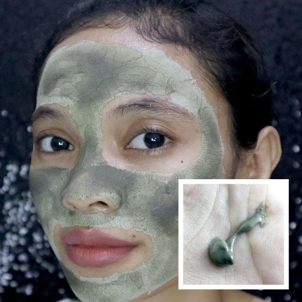 himalaya-herbals-purifiying-neem-mask-review4