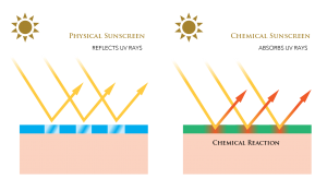 OROGOLD-guide-to-physical-and-chemical-sunscreens