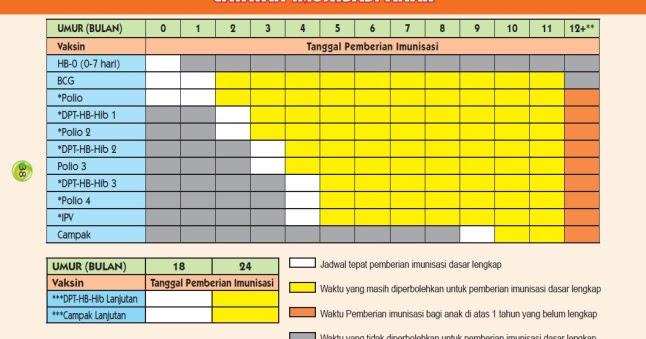 Jadwal Imunisasi Lengkap Anak
